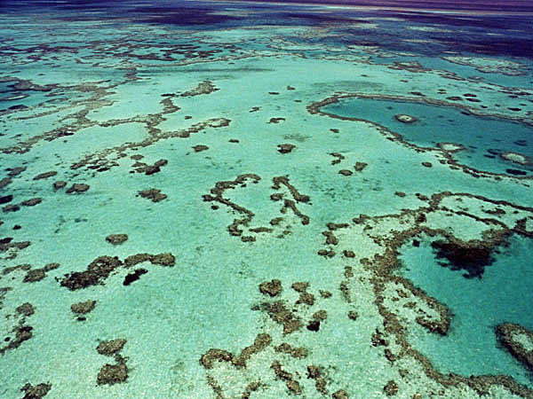 Barrier reef Australia