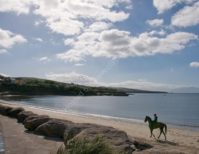 Beach & Horse