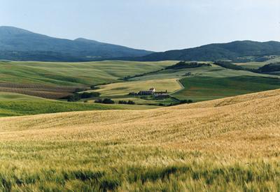 Tuscanny 4