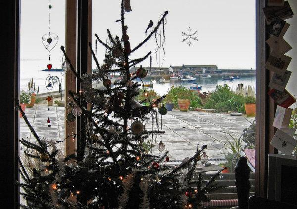 Christmas Tree & Harbour