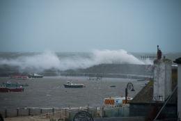 November storm-28940