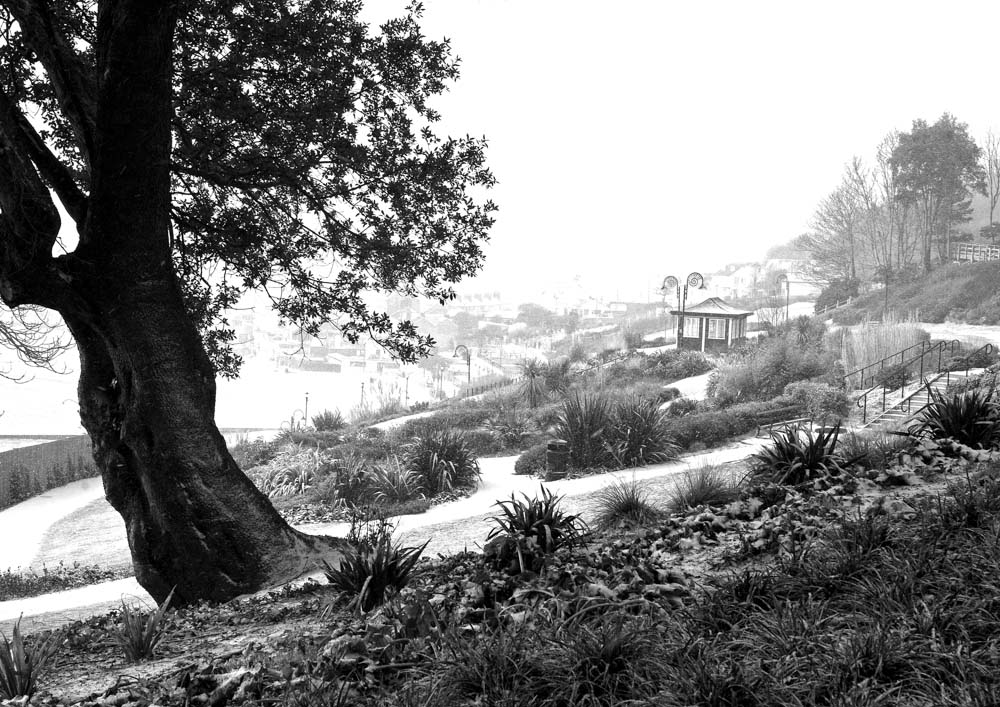 PW9 6795 Winter Langmore Gardens B&W-A3rev