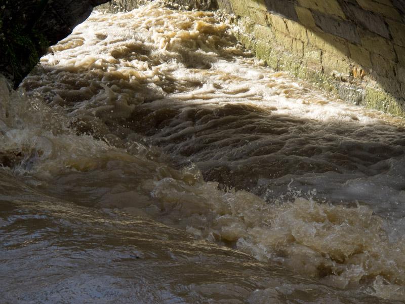 River Lim-2938