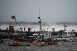 Harbour Storm-29003-2