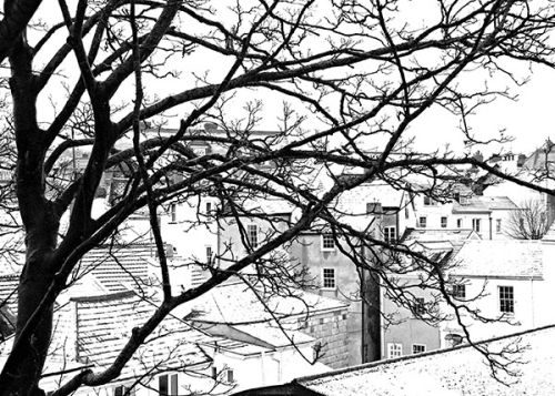 Roofs in the Snow, Lyme Regis