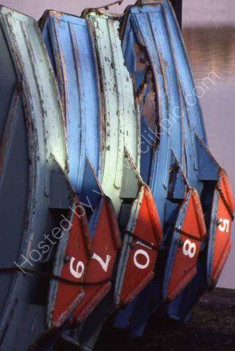 Paddle boats, Roath Park lake, Cardiff