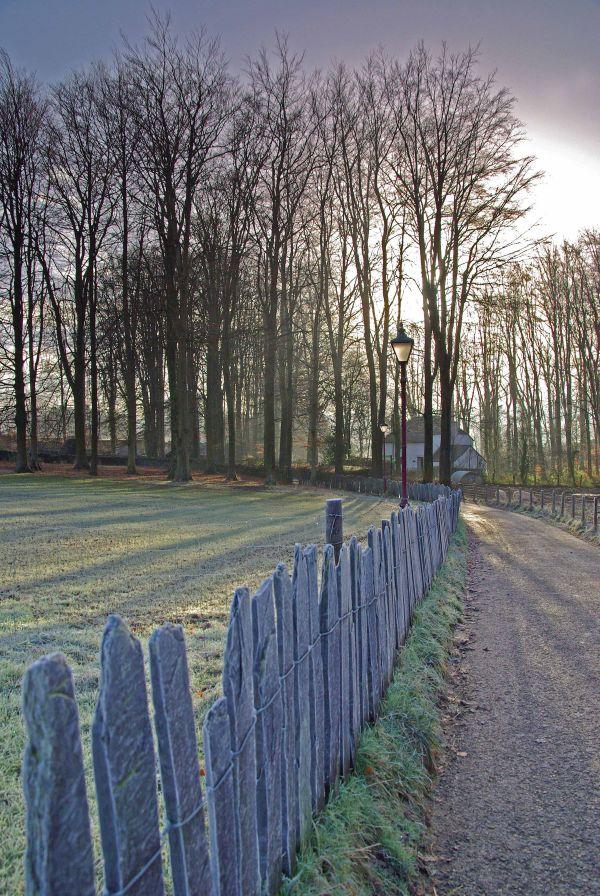 Slate fence on a frosty morning