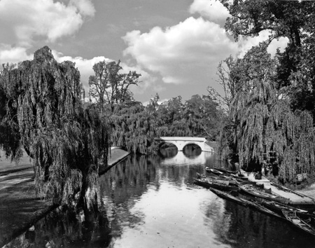 River Cam at Trinity.