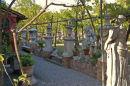 Old Garden. Torcello. Venice