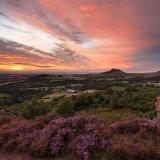 Gribdale Sunset