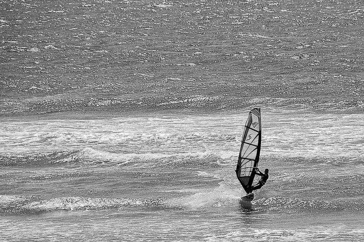 Oregon Surfer