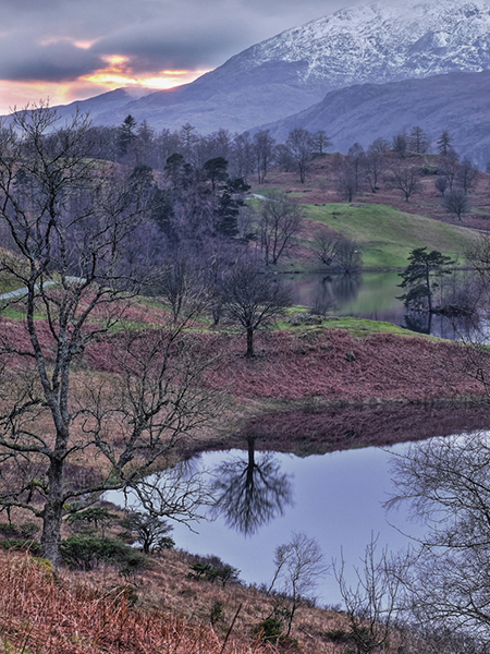 Tarn Hows At Dusk