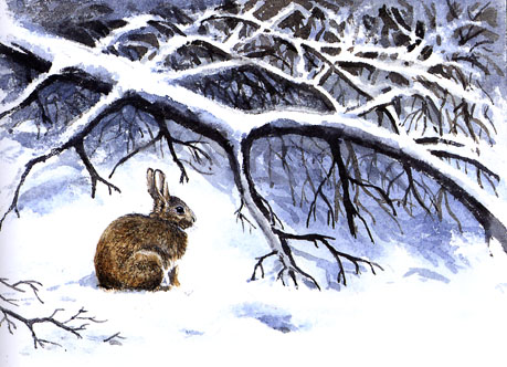 Living is hard for the rabbit in the winter. Mixed media