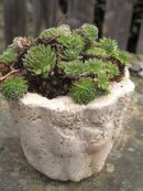 Hypertufa planter, Hypertufa Plant pot, Etsy, PJCreationCraft.