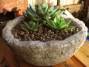 Hypertufa planter, plant pot.