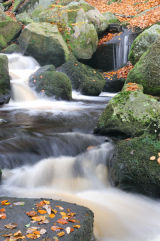 Padley Gorge in Autumn