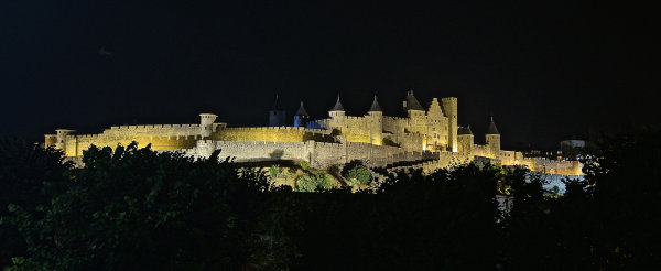 Commended: Carcassone Citadel