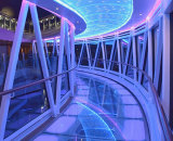 1st Place - Reflections Regal Princess Skywalk