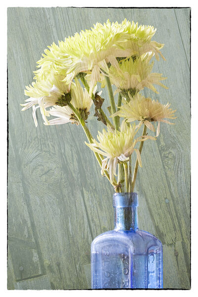 2nd Place: Blooms And Bottle