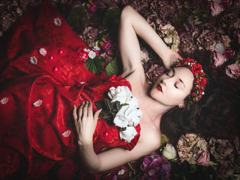 3rd Place: Sleeping Beauty
