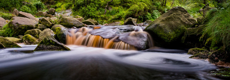 Commended - Black Clough Stream
