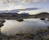 Highly Commended: Daybreak on Rannoch Moor