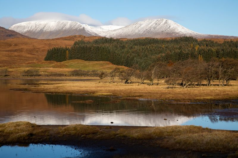 Commended: Early Autumn Snow