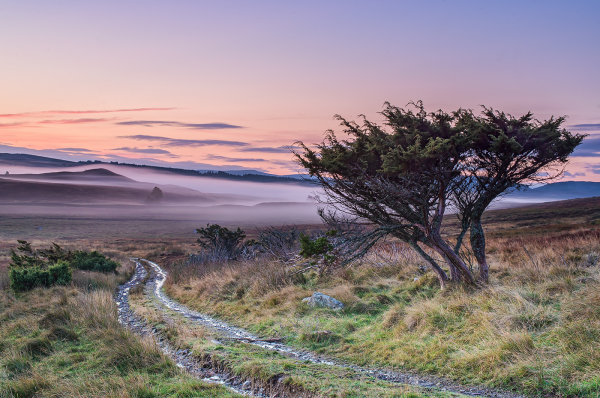 3rd Place: Pre Dawn Light and Mist Over Dava Moor