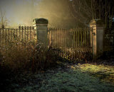 Commended - Old Gates Into The Mist