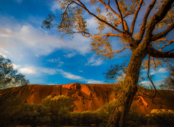 1st Place - Dawn at Uluru