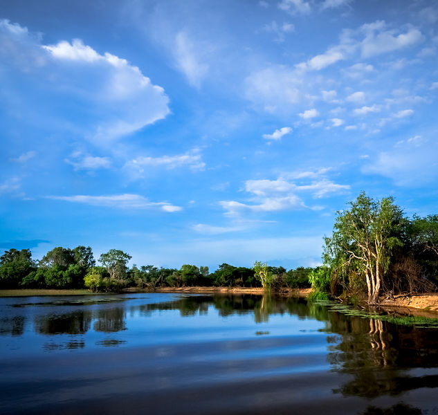 Commended: Yellow River Kakadu National Park Australia
