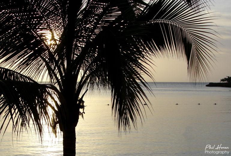 Jamican Sunset