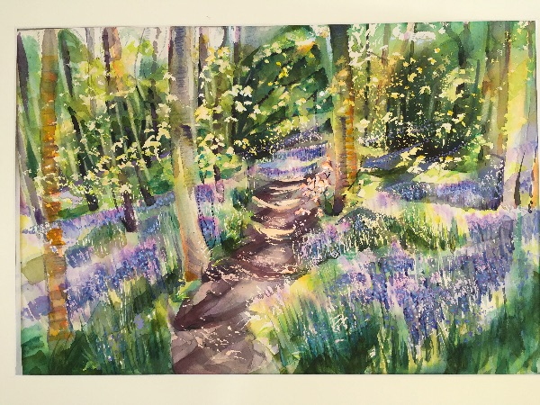 Bluebell Track