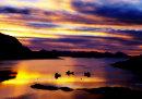 Cuillins across Loch Carron