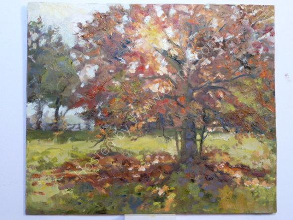October light Oil