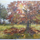 October light  Oil