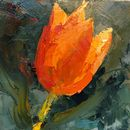 #30days20 challenge Tulip Oil on board 6x6""