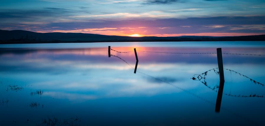 Calder Sunset