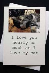 I love you nearly as much as I love my cat