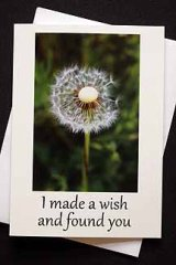 I made a wish and found you