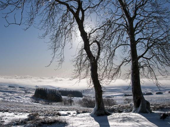 Mynydd Epynt in winter.