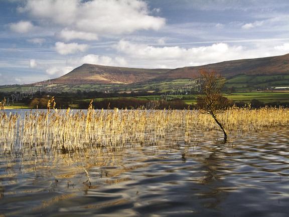 Mynydd Troed from Llangorse Lake.