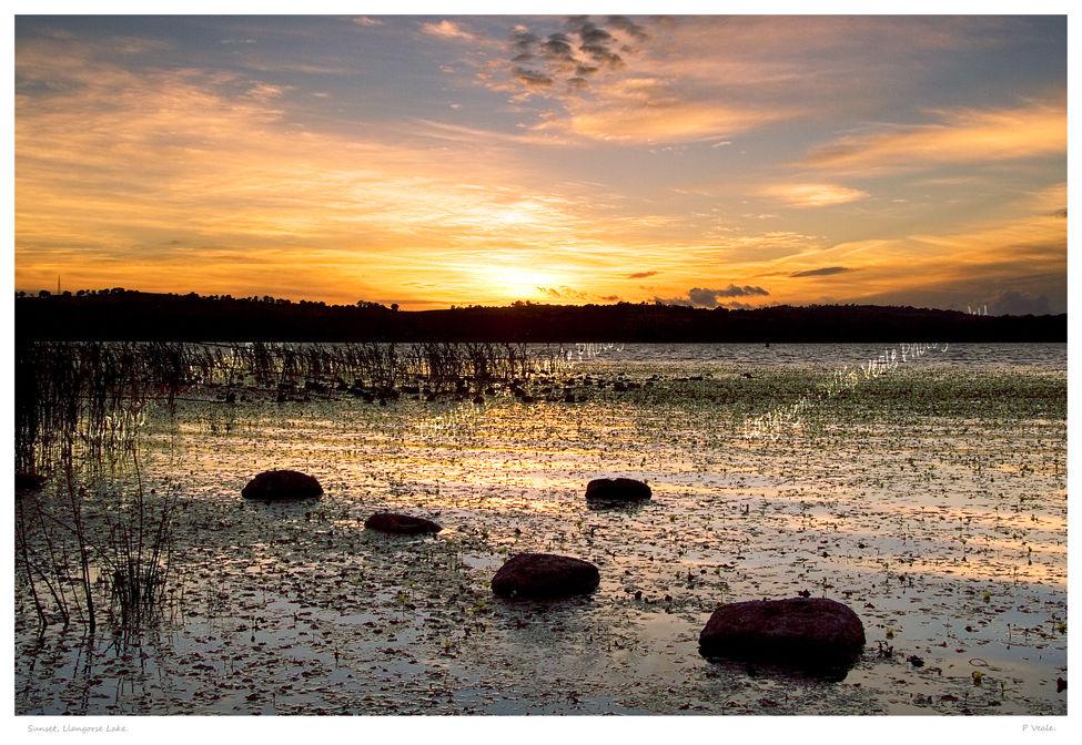 Sunset, Llangorse Lake.