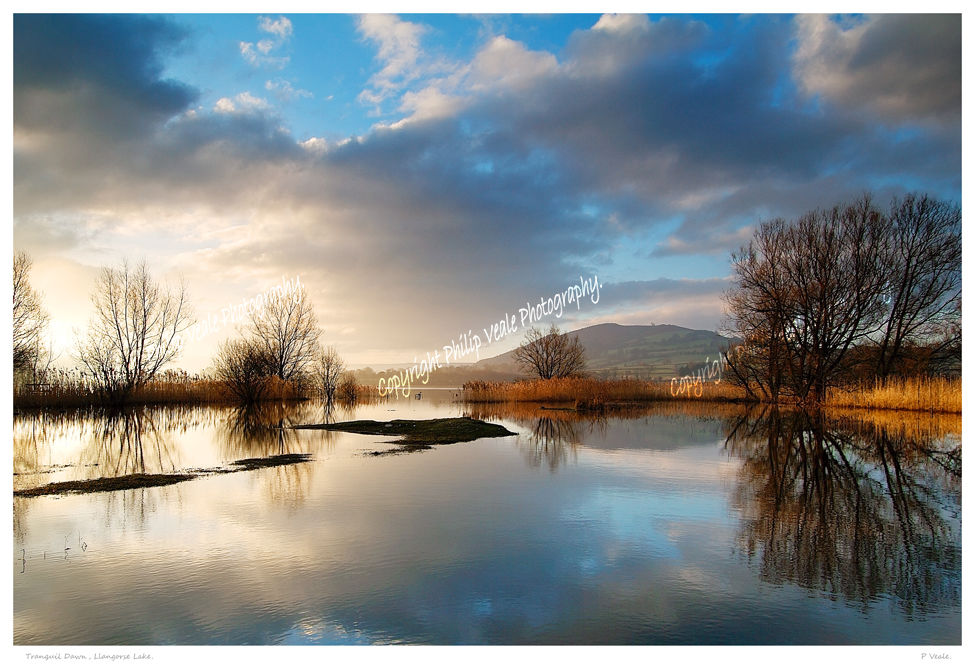 Tranquil Dawn.Llangorse Lake.