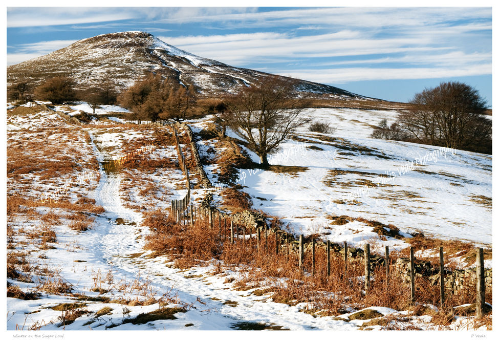 Winter on the Sugar Loaf.