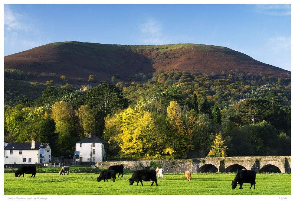Castle Meadows and Blorenge.