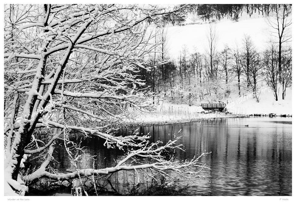 Winter at the lake.