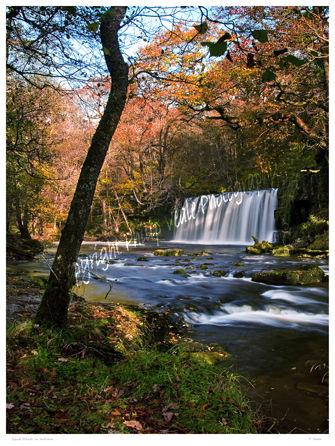 Sgwd Ddwli in autumn.