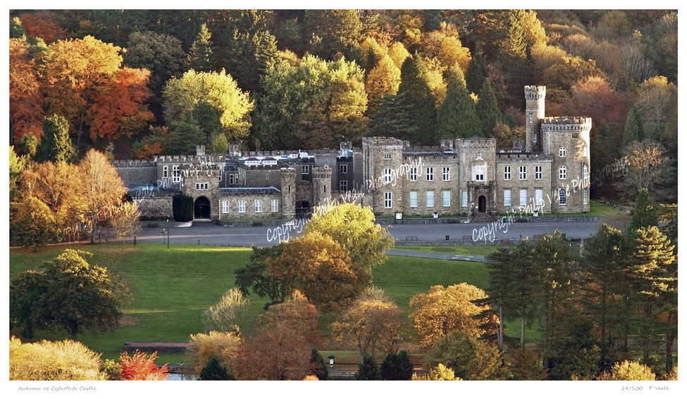 Autumn, Cyfarthfa Castle.