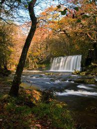Autumn, Scwd Ddwli.